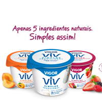 Vigor Viv2